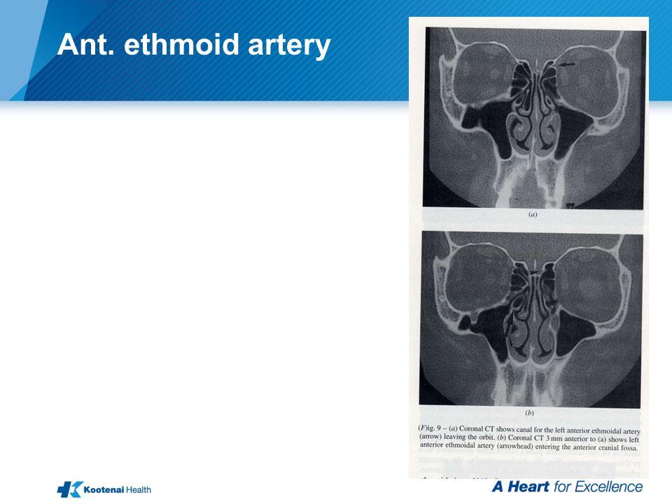 Ant. ethmoid artery