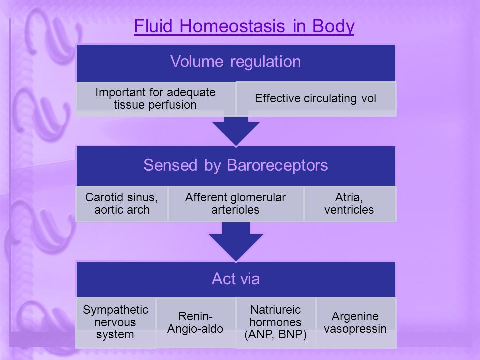 Fluid Homeostasis in Body Act via Sympathetic nervous system Renin- Angio-aldo Natriureic hormones (ANP, BNP) Argenine vasopressin Sensed by Barorecep