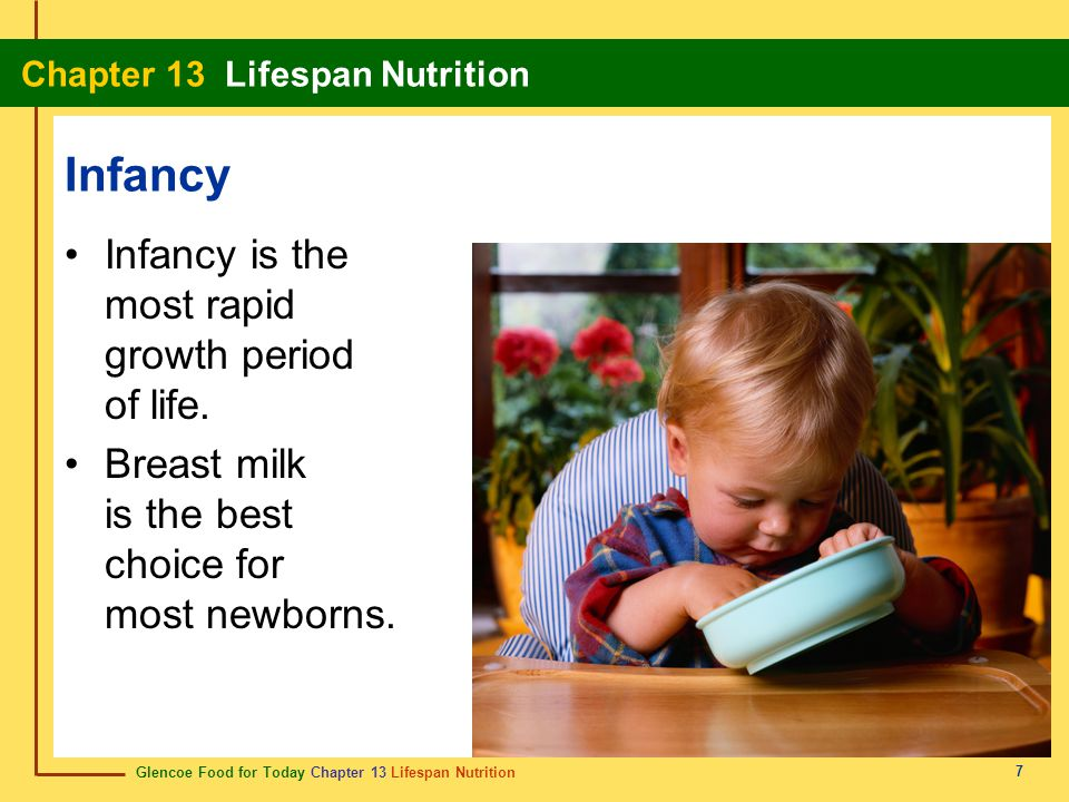 Glencoe Food for Today Chapter 13 Lifespan Nutrition Chapter 13 Lifespan Nutrition 7 Infancy Infancy is the most rapid growth period of life. Breast m