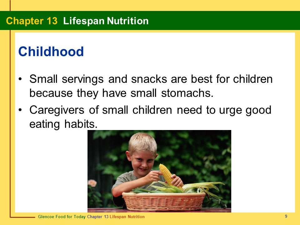 Glencoe Food for Today Chapter 13 Lifespan Nutrition Chapter 13 Lifespan Nutrition 9 Childhood Small servings and snacks are best for children because