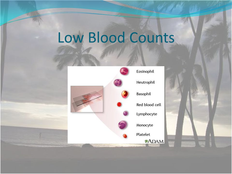 Low Blood Counts