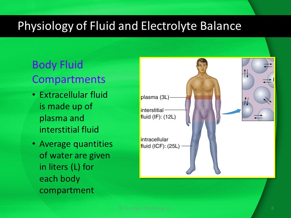 Physiology of Fluid and Electrolyte Balance Common Electrolytes: Phosphate (PO 4 - ) Anion used in energy production for normal cell function Phosphate counterbalances calcium in blood Excessive intake of electrolyte can deplete calcium levels, affecting bone health 17© Paradigm Publishing, Inc.
