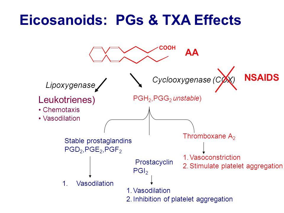 Eicosanoids: PGs & TXA Effects AA Cyclooxygenase (COX) Lipoxygenase PGH 2,PGG 2 unstable) Stable prostaglandins PGD 2,PGE 2,PGF 2 1.Vasodilation Prostacyclin PGI 2 1.Vasodilation 2.Inhibition of platelet aggregation Thromboxane A 2 1.Vasoconstriction 2.Stimulate platelet aggregation NSAIDS Leukotrienes) Chemotaxis Vasodilation