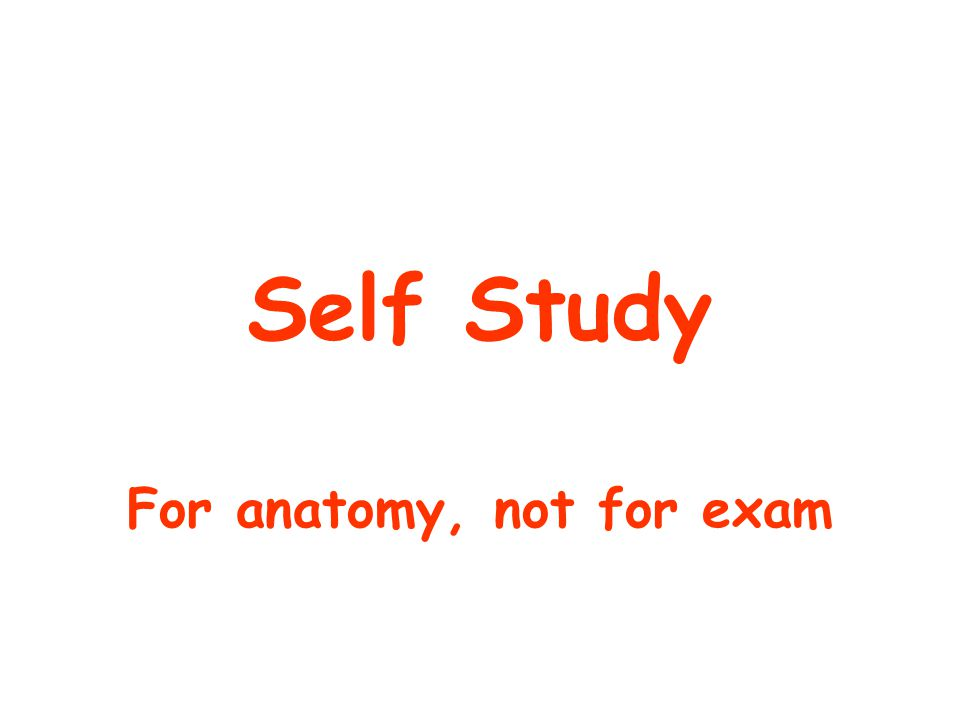 Self Study For anatomy, not for exam
