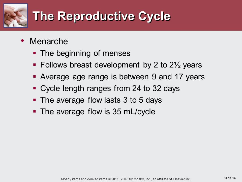 Slide 14 Mosby items and derived items © 2011, 2007 by Mosby, Inc., an affiliate of Elsevier Inc. The Reproductive Cycle Menarche  The beginning of m
