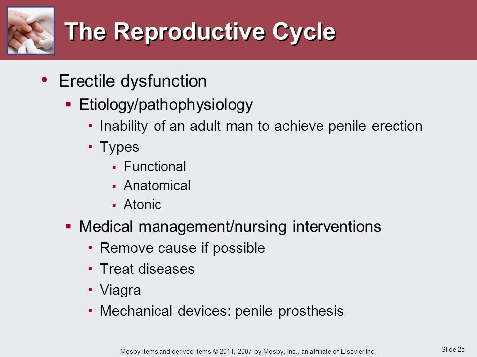 Slide 25 Mosby items and derived items © 2011, 2007 by Mosby, Inc., an affiliate of Elsevier Inc. The Reproductive Cycle Erectile dysfunction  Etiolo