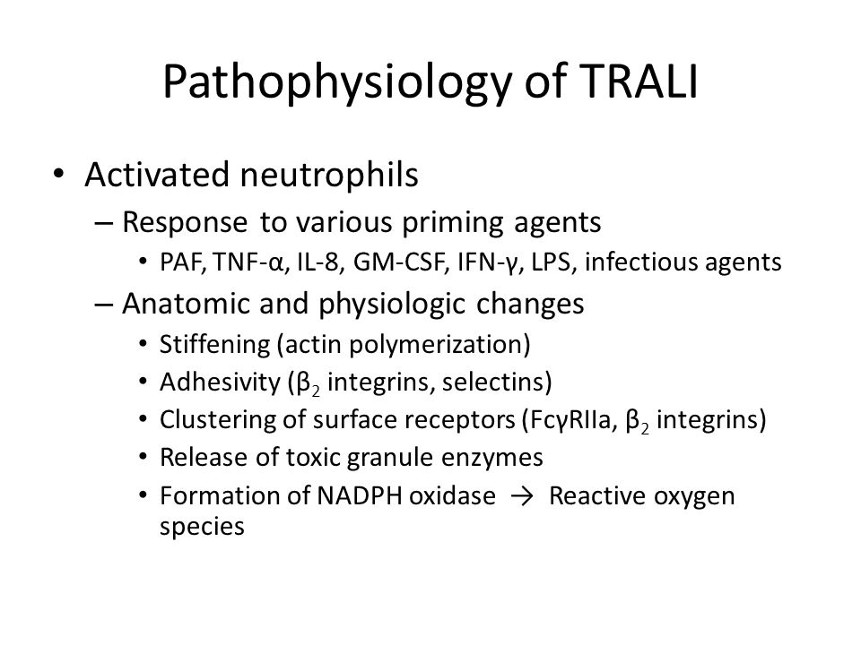 Pathophysiology of TRALI Activated neutrophils – Response to various priming agents PAF, TNF-α, IL-8, GM-CSF, IFN-γ, LPS, infectious agents – Anatomic and physiologic changes Stiffening (actin polymerization) Adhesivity (β 2 integrins, selectins) Clustering of surface receptors (FcγRIIa, β 2 integrins) Release of toxic granule enzymes Formation of NADPH oxidase → Reactive oxygen species
