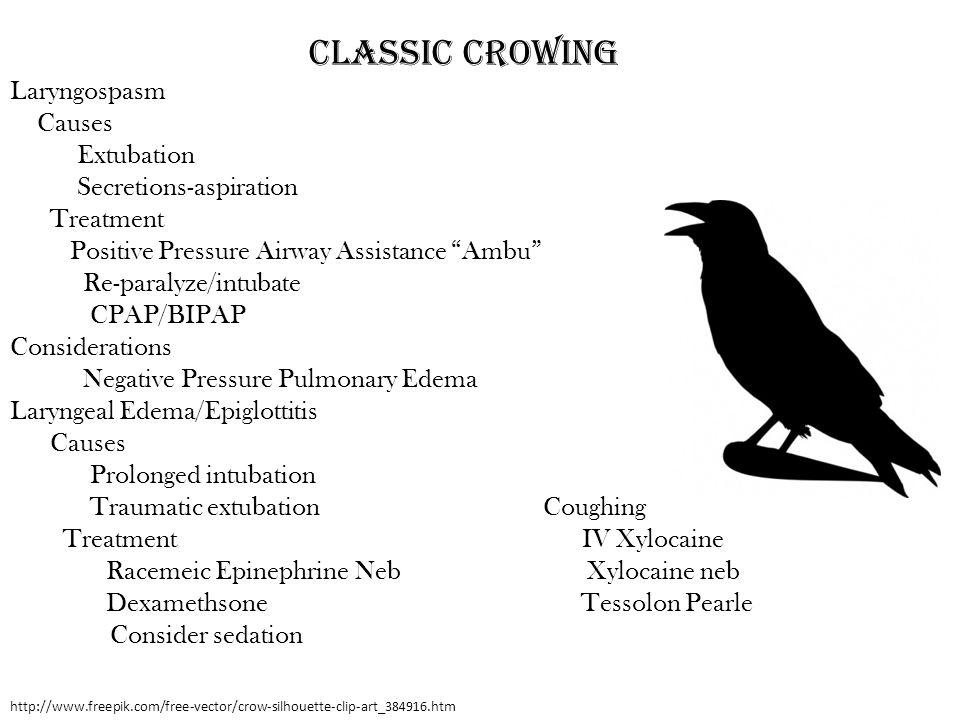 http://www.freepik.com/free-vector/crow-silhouette-clip-art_384916.htm Classic Crowing Laryngospasm Causes Extubation Secretions-aspiration Treatment