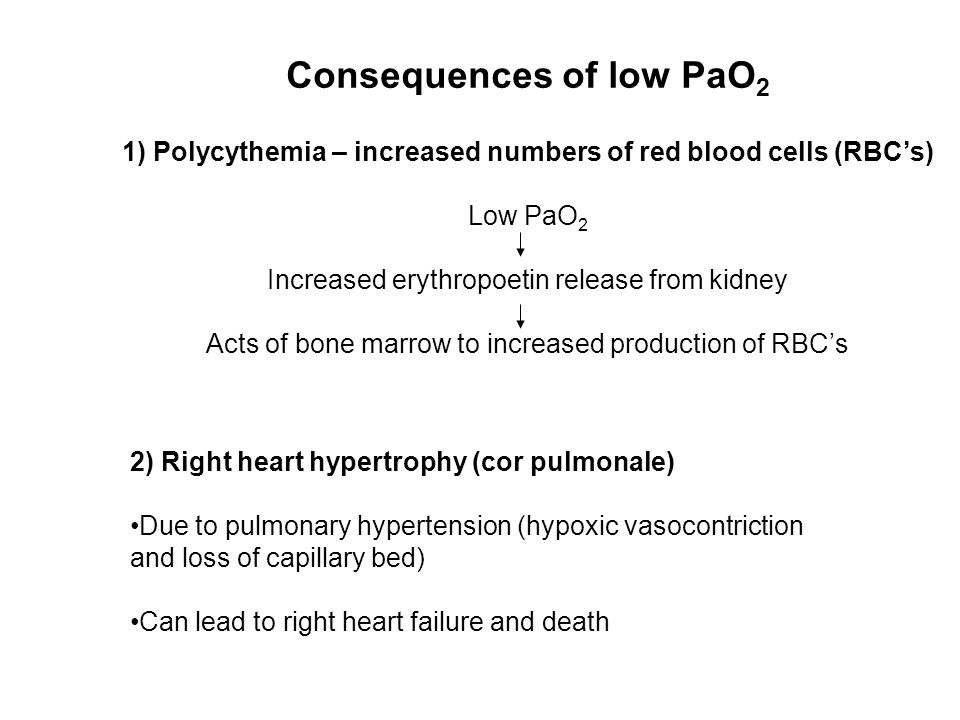 Consequences of low PaO 2 1) Polycythemia – increased numbers of red blood cells (RBC's) Low PaO 2 Increased erythropoetin release from kidney Acts of bone marrow to increased production of RBC's 2) Right heart hypertrophy (cor pulmonale) Due to pulmonary hypertension (hypoxic vasocontriction and loss of capillary bed) Can lead to right heart failure and death