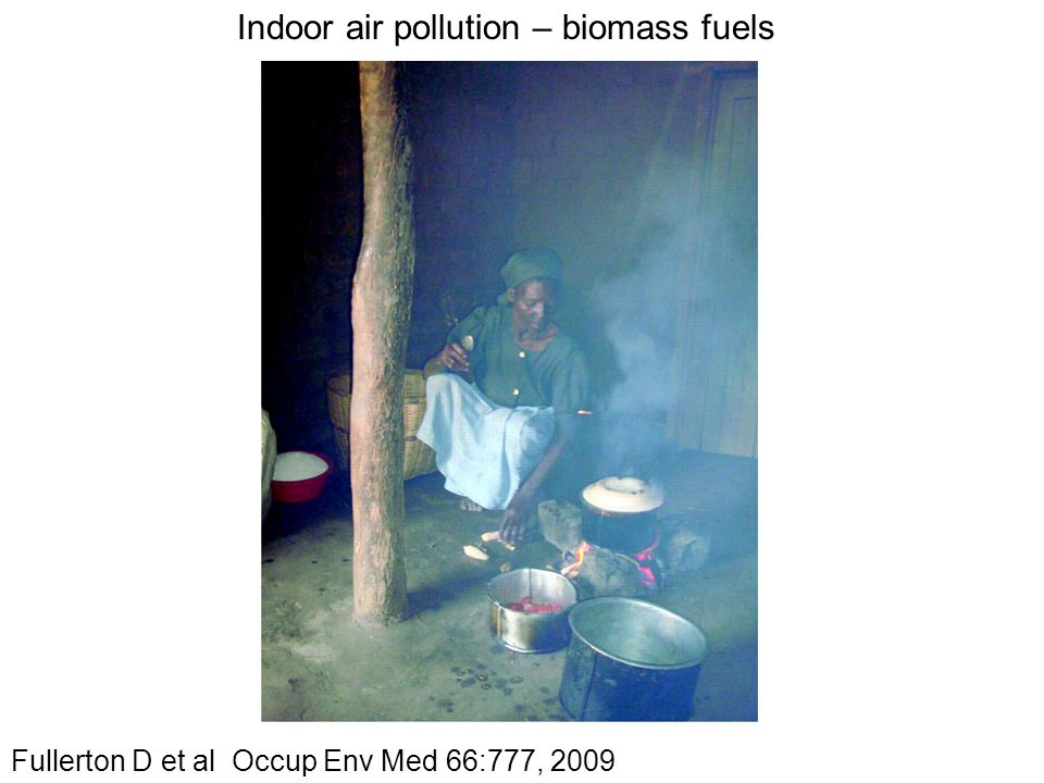 Indoor air pollution – biomass fuels Fullerton D et al Occup Env Med 66:777, 2009