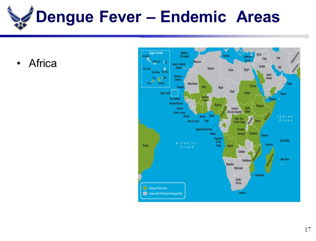 Dengue Fever – Endemic Areas Africa 17