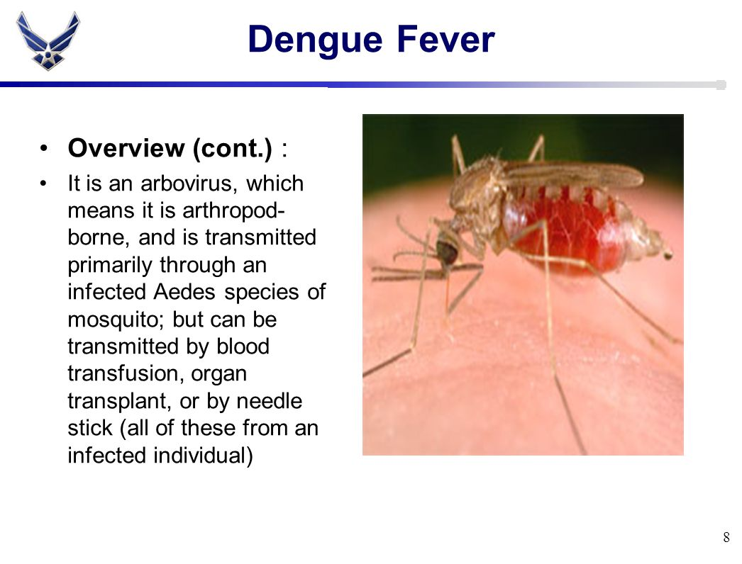 Dengue Fever Overview (cont.) : It is an arbovirus, which means it is arthropod- borne, and is transmitted primarily through an infected Aedes species of mosquito; but can be transmitted by blood transfusion, organ transplant, or by needle stick (all of these from an infected individual) 8