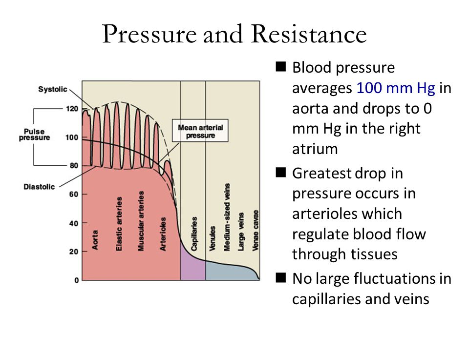 Pressure and Resistance Blood pressure averages 100 mm Hg in aorta and drops to 0 mm Hg in the right atrium Greatest drop in pressure occurs in arterioles which regulate blood flow through tissues No large fluctuations in capillaries and veins