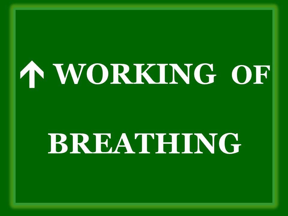  WORKING OF BREATHING