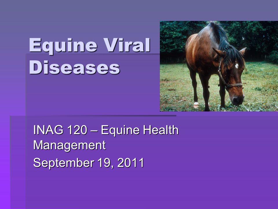 Equine Viral Diseases INAG 120 – Equine Health Management September 19, 2011