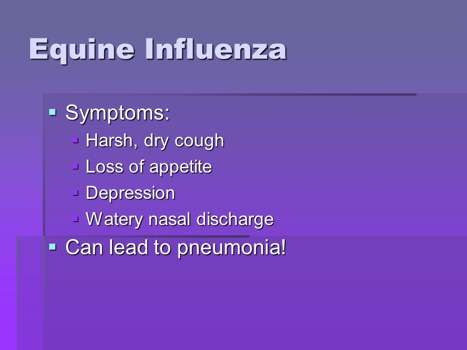 Equine Influenza  Symptoms:  Harsh, dry cough  Loss of appetite  Depression  Watery nasal discharge  Can lead to pneumonia!