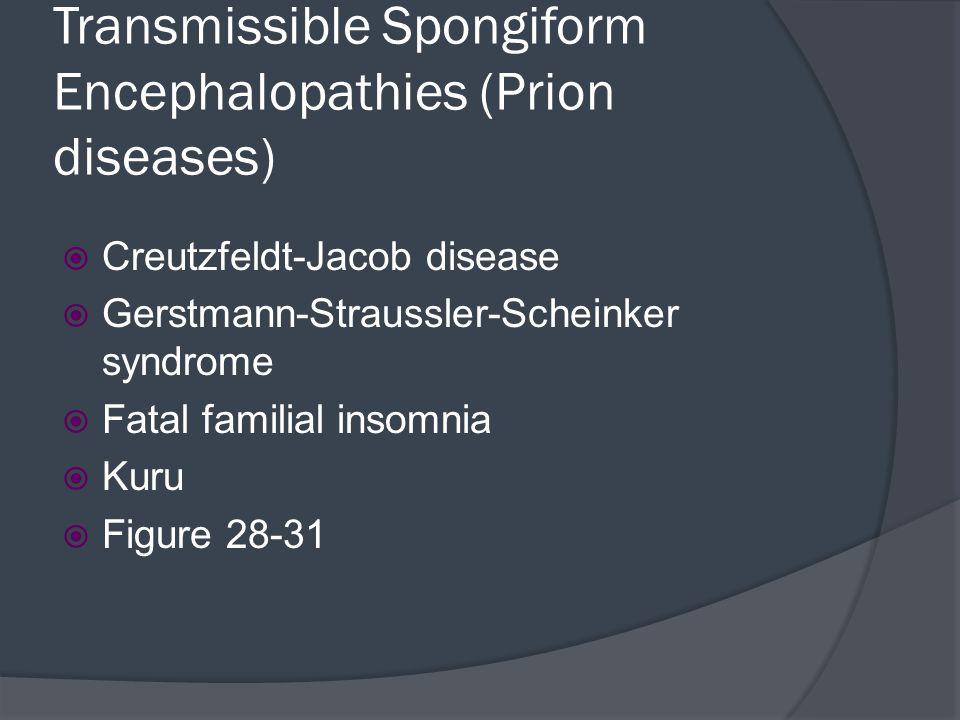 Transmissible Spongiform Encephalopathies (Prion diseases)  Creutzfeldt-Jacob disease  Gerstmann-Straussler-Scheinker syndrome  Fatal familial inso