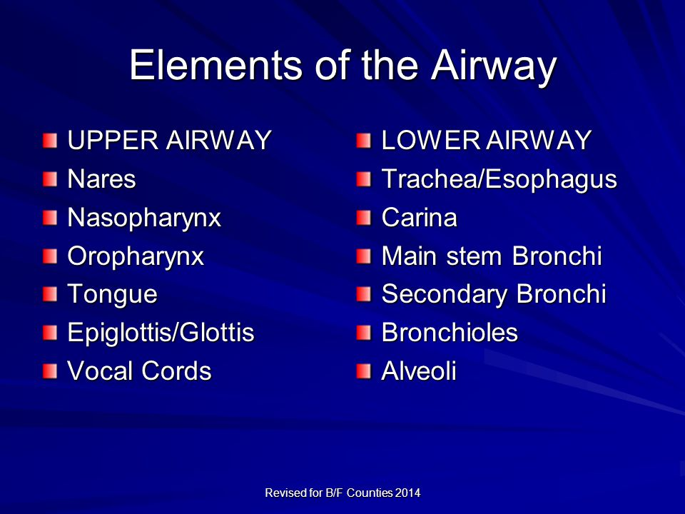 Elements of the Airway UPPER AIRWAY NaresNasopharynxOropharynxTongueEpiglottis/Glottis Vocal Cords LOWER AIRWAY Trachea/EsophagusCarina Main stem Bronchi Secondary Bronchi BronchiolesAlveoli Revised for B/F Counties 2014