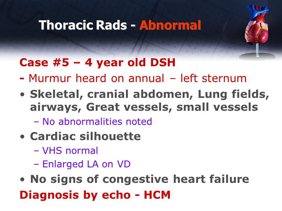 Thoracic Rads - Abnormal Case #5 – 4 year old DSH - Murmur heard on annual – left sternum Skeletal, cranial abdomen, Lung fields, airways, Great vesse