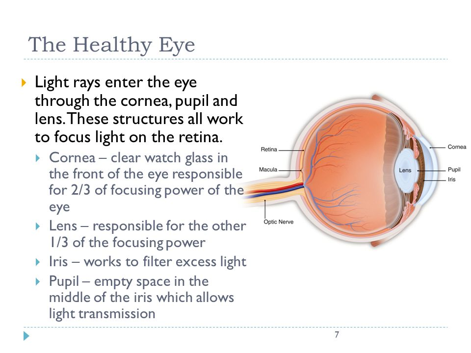 7 The Healthy Eye  Light rays enter the eye through the cornea, pupil and lens. These structures all work to focus light on the retina.  Cornea – cl