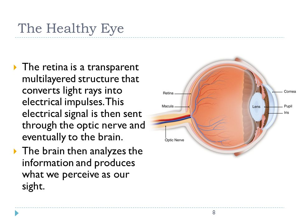 8 The Healthy Eye  The retina is a transparent multilayered structure that converts light rays into electrical impulses. This electrical signal is th