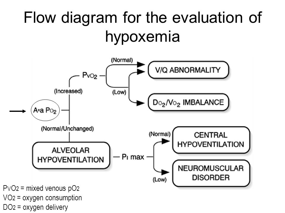 Flow diagram for the evaluation of hypoxemia P V O 2 = mixed venous pO 2 VO 2 = oxygen consumption DO 2 = oxygen delivery