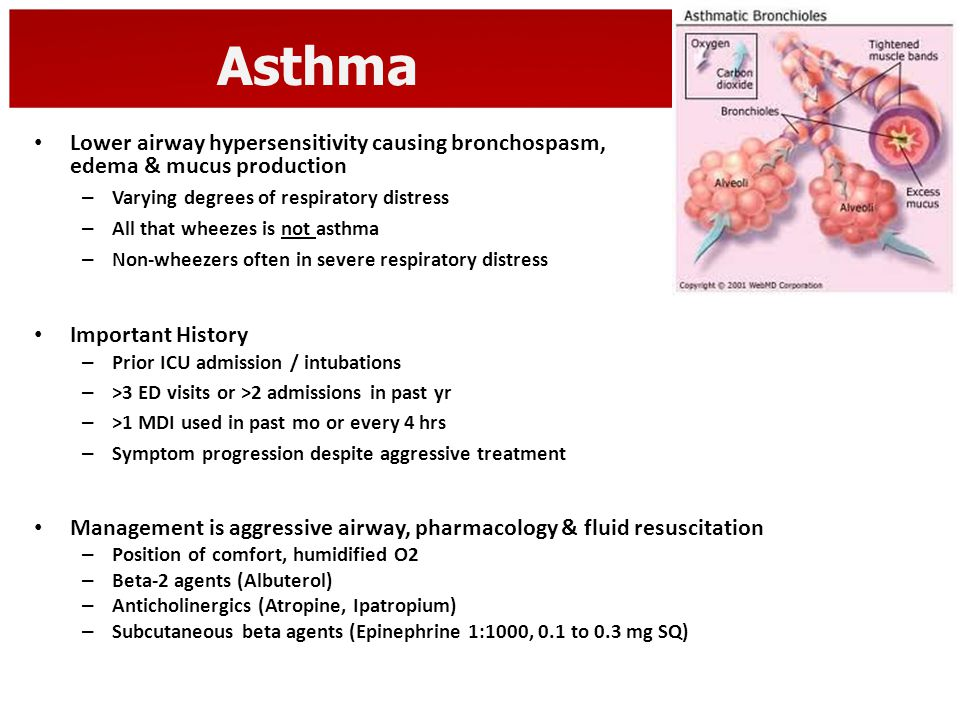 Asthma Lower airway hypersensitivity causing bronchospasm, edema & mucus production – Varying degrees of respiratory distress – All that wheezes is no