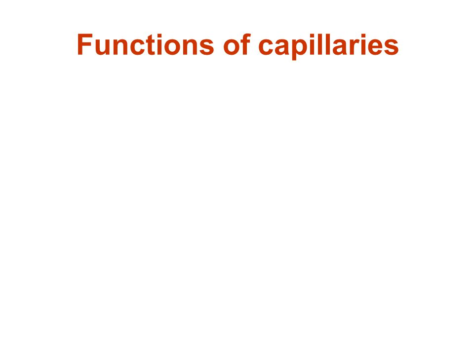 Movement across capillaries Fluid, electrolytes, gases, small and large molecular weight substances can transverse the capillary endothelium by several different mechanisms: diffusion, bulk flow, vesicular transport, and active transport diffusionbulk flow vesicular transportactive transport