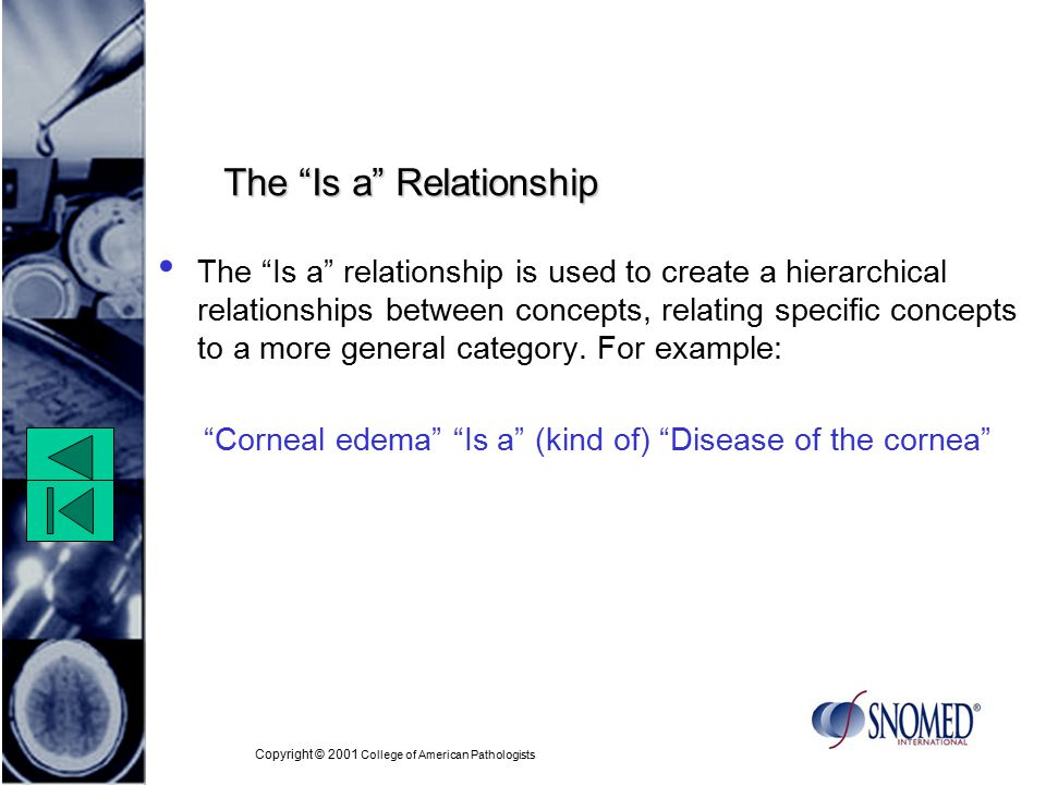 Copyright © 2001 College of American Pathologists The Is a Relationship The Is a relationship is used to create a hierarchical relationships between concepts, relating specific concepts to a more general category.
