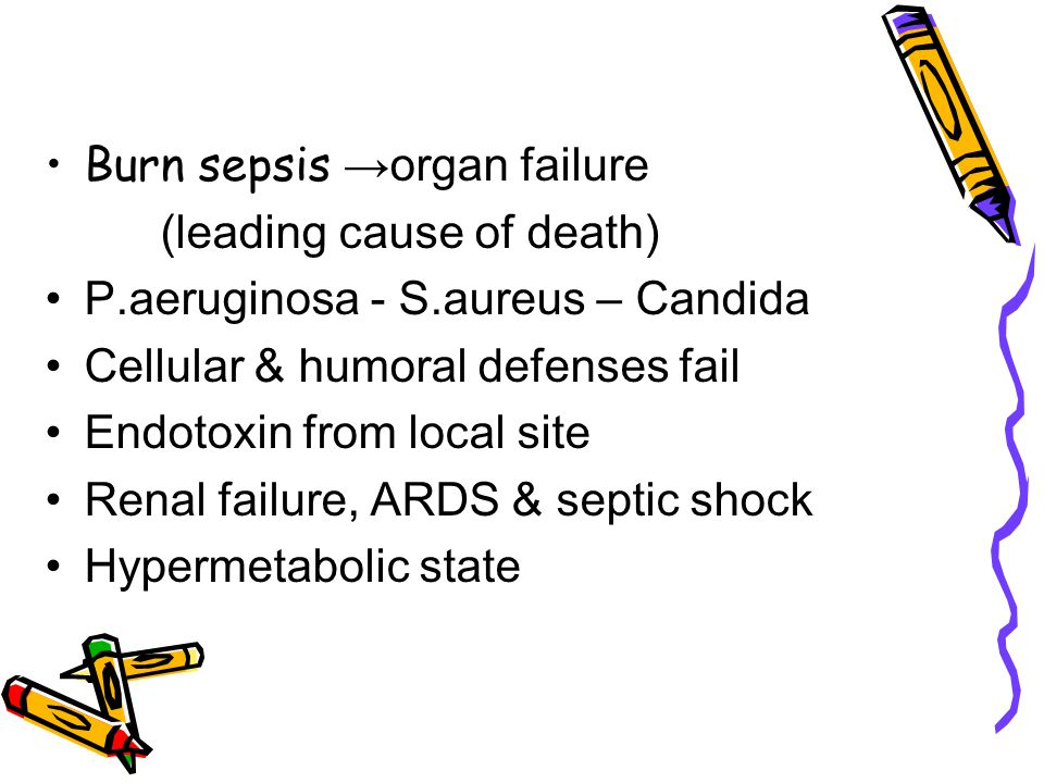 Burn sepsis →organ failure (leading cause of death) P.aeruginosa - S.aureus – Candida Cellular & humoral defenses fail Endotoxin from local site Renal