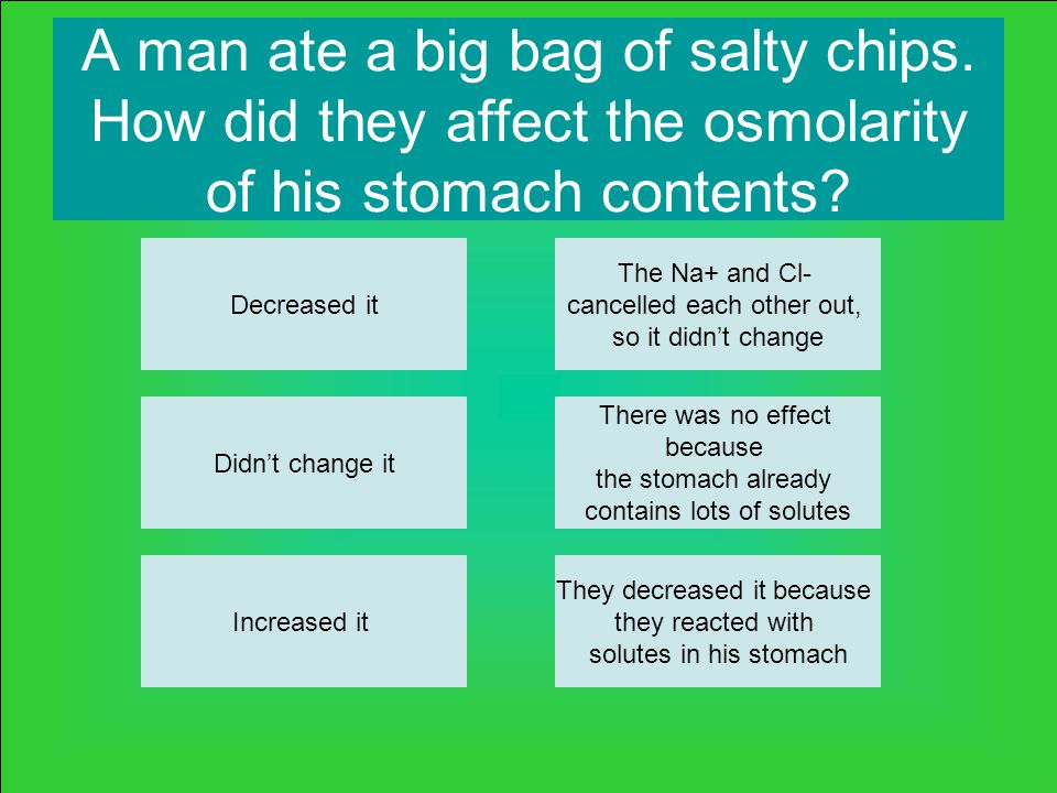 A man ate a big bag of salty chips. How did they affect the osmolarity of his stomach contents.