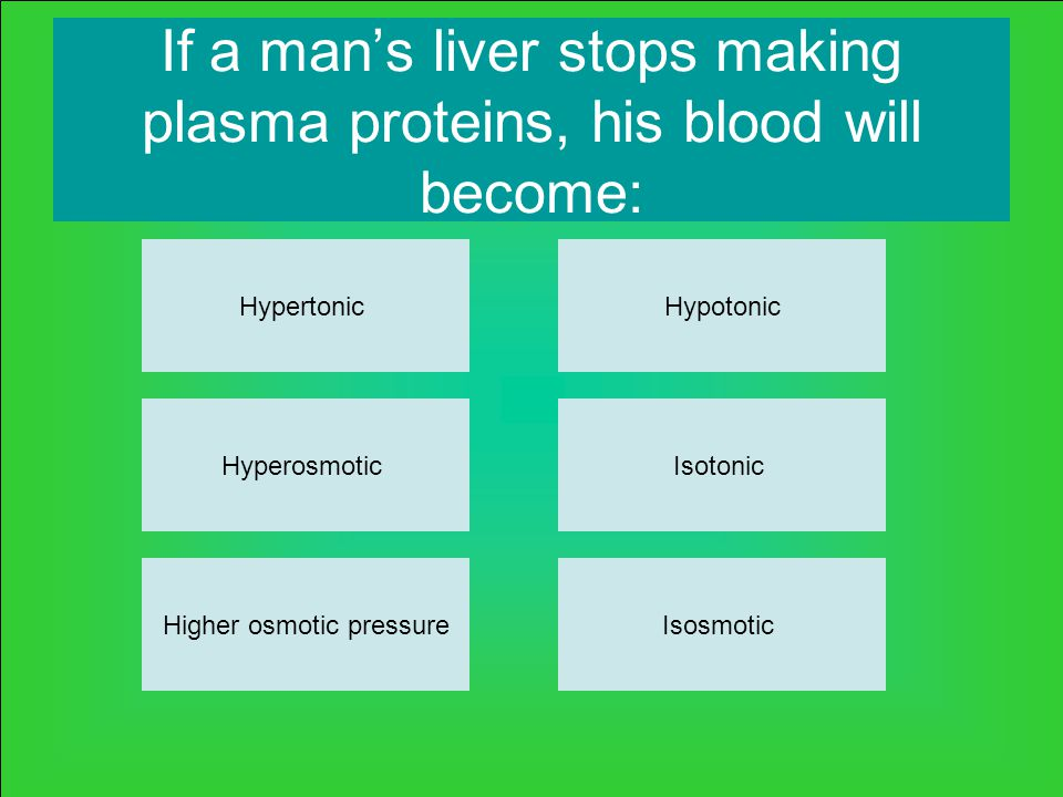 If a man's liver stops making plasma proteins, his blood will become: Hypertonic Higher osmotic pressureIsosmotic Isotonic Hypotonic Hyperosmotic