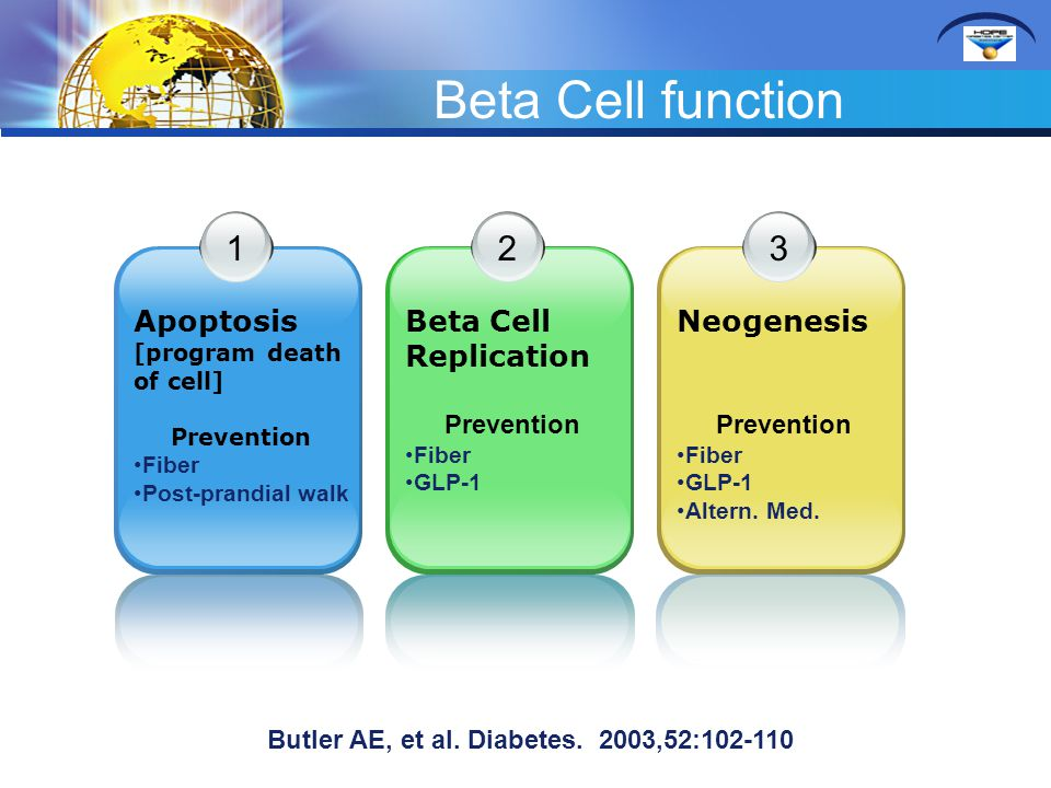 Beta Cell function 1 Apoptosis [program death of cell] Prevention Fiber Post-prandial walk 2 Beta Cell Replication Prevention Fiber GLP-1 3 Neogenesis Prevention Fiber GLP-1 Altern.