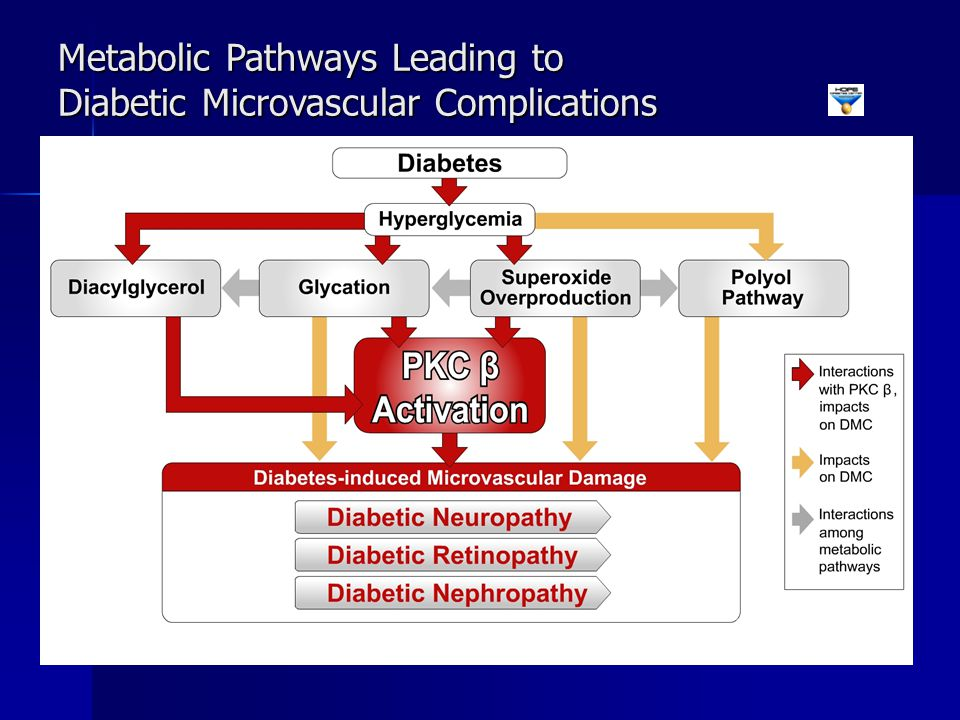 Metabolic Pathways Leading to Diabetic Microvascular Complications