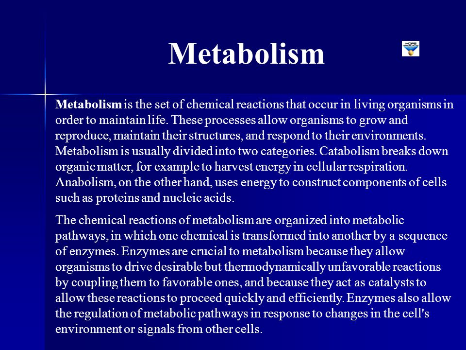Metabolism is the set of chemical reactions that occur in living organisms in order to maintain life. These processes allow organisms to grow and repr