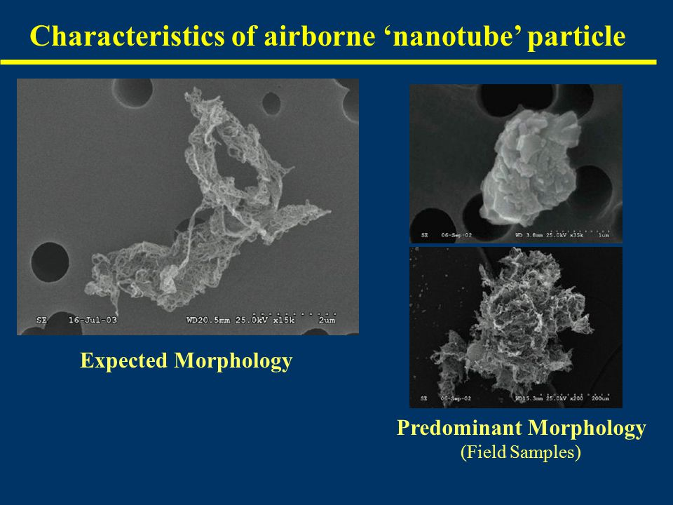 Characteristics of airborne 'nanotube' particle Expected Morphology Predominant Morphology (Field Samples)