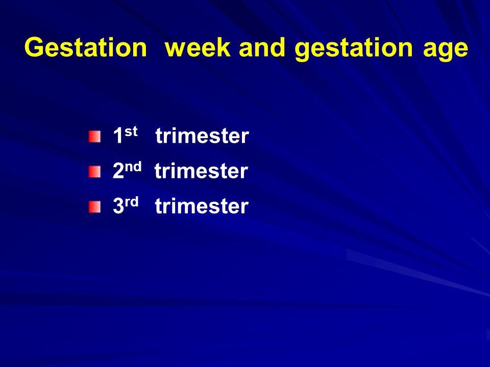 Gestation week and gestation age 1 st trimester 2 nd trimester 3 rd trimester