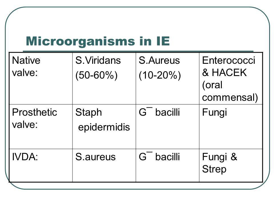 Microorganisms in IE Native valve: S.Viridans (50-60%) S.Aureus (10-20%) Enterococci & HACEK (oral commensal) Prosthetic valve: Staph epidermidis G¯ bacilliFungi IVDA:S.aureusG¯ bacilliFungi & Strep