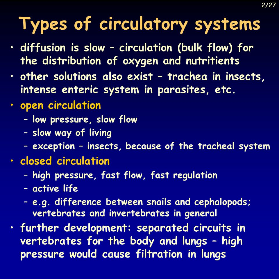 Types of circulatory systems diffusion is slow – circulation (bulk flow) for the distribution of oxygen and nutritients other solutions also exist – trachea in insects, intense enteric system in parasites, etc.
