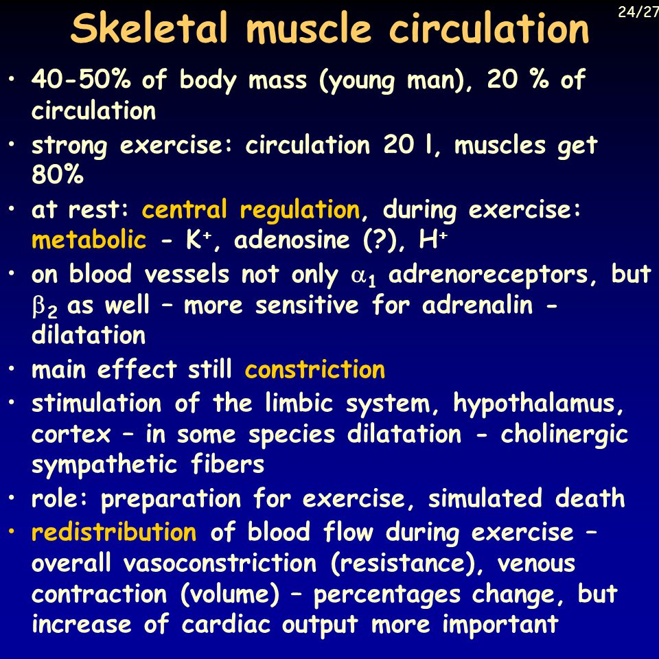 Skeletal muscle circulation 40-50% of body mass (young man), 20 % of circulation strong exercise: circulation 20 l, muscles get 80% at rest: central regulation, during exercise: metabolic - K +, adenosine ( ), H + on blood vessels not only  1 adrenoreceptors, but  2 as well – more sensitive for adrenalin - dilatation main effect still constriction stimulation of the limbic system, hypothalamus, cortex – in some species dilatation - cholinergic sympathetic fibers role: preparation for exercise, simulated death redistribution of blood flow during exercise – overall vasoconstriction (resistance), venous contraction (volume) – percentages change, but increase of cardiac output more important 24/27