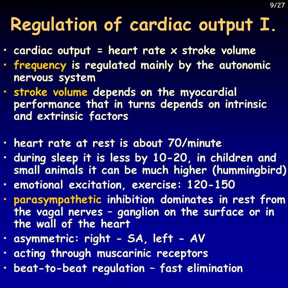 Regulation of cardiac output I.