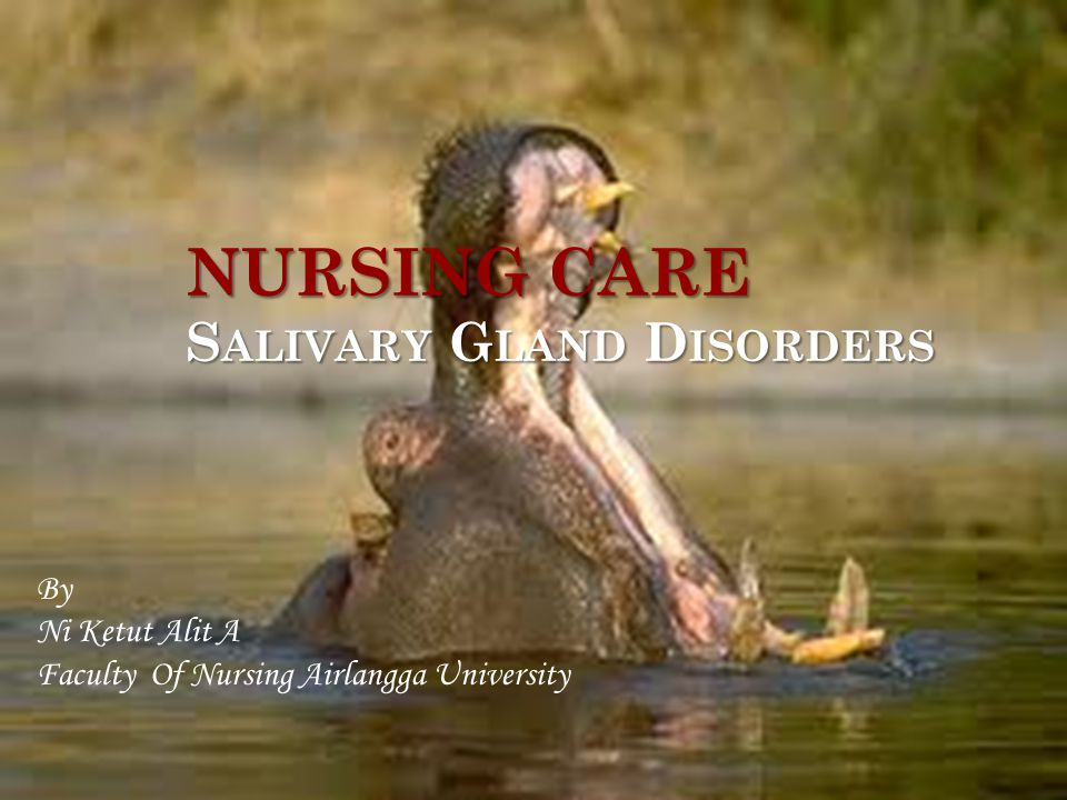 NURSING CARE S ALIVARY G LAND D ISORDERS By Ni Ketut Alit A Faculty Of Nursing Airlangga University