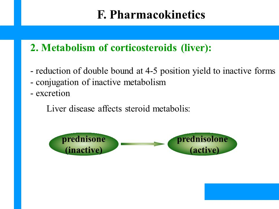 2. Metabolism of corticosteroids (liver): - reduction of double bound at 4-5 position yield to inactive forms - conjugation of inactive metabolism - e