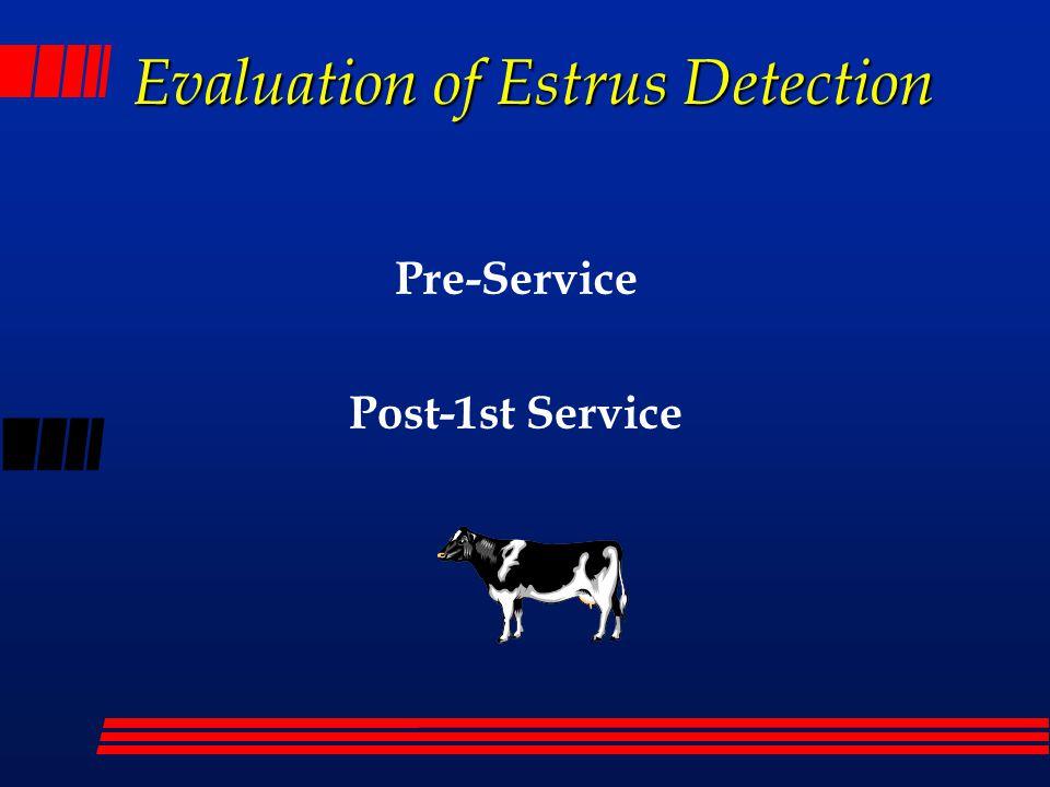 Pre-service Estrus Detection Efficiency Days in estrous cycle ((Days 1st Service - VWP) + 11) 21 (95 - 55) + 11 X 100 X 100 = 41.2%