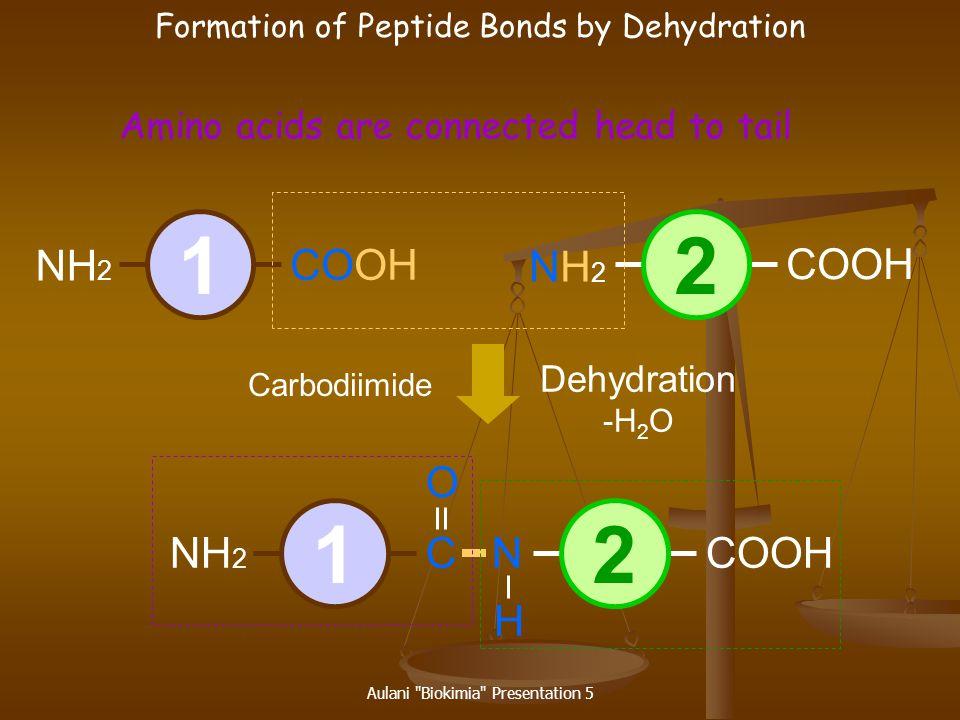 Aulani Biokimia Presentation 5 Dipeptide