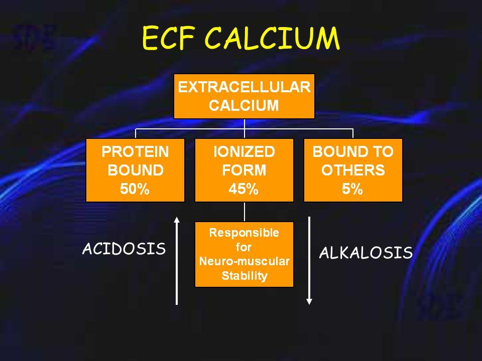 ECF Ca 2+ Ca 2+ 0.5gm/D Ca 2+ 1Kg Ca 2+ 9.8gm/D Ca 2+ 0.2gm/D Ca 2+ 10gm/D Ca 2+ 0.2gm/D Ca 2+ 1 gm/D Ca 2+ 0.8gm/D URINE CALCIUM METABOLISM