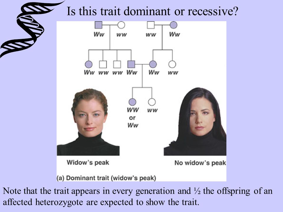 Is this trait dominant or recessive.