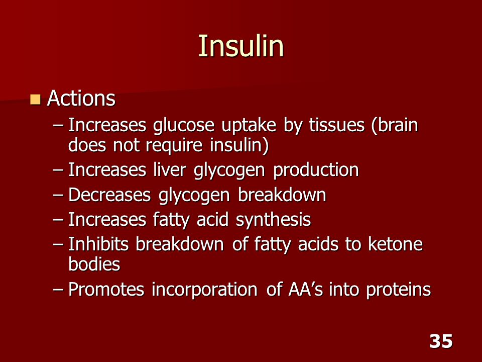 35 Insulin Actions Actions –Increases glucose uptake by tissues (brain does not require insulin) –Increases liver glycogen production –Decreases glyco