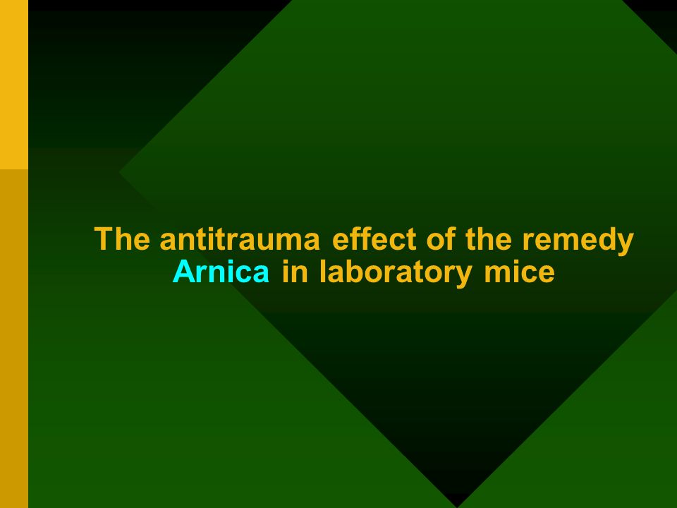 The antitrauma effect of the remedy Arnica in laboratory mice