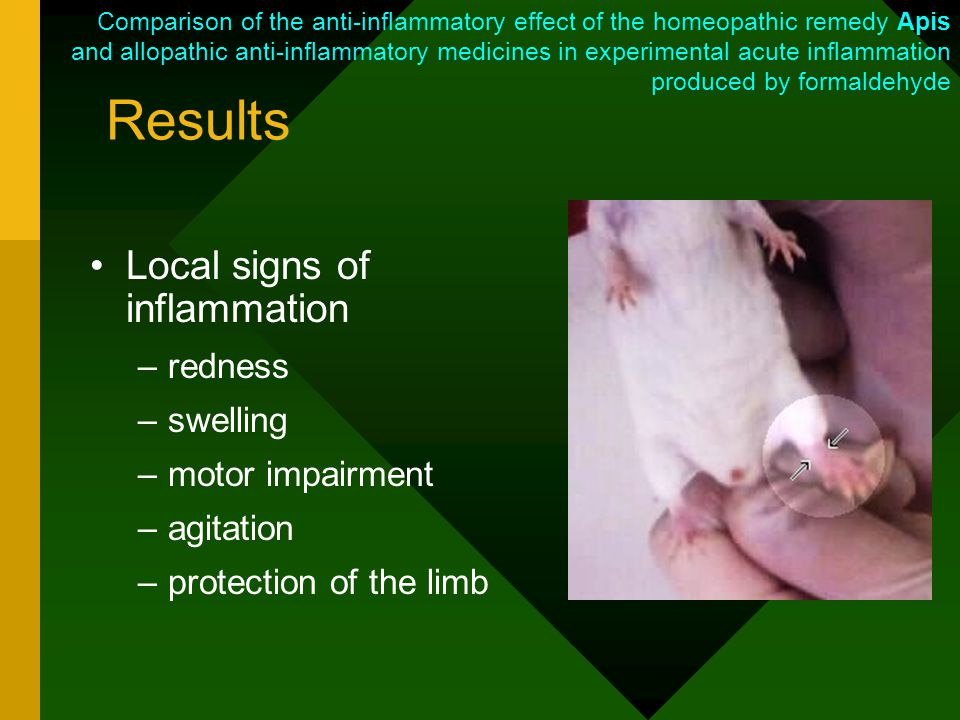 Results Local signs of inflammation –redness –swelling –motor impairment –agitation –protection of the limb Comparison of the anti-inflammatory effect of the homeopathic remedy Apis and allopathic anti-inflammatory medicines in experimental acute inflammation produced by formaldehyde